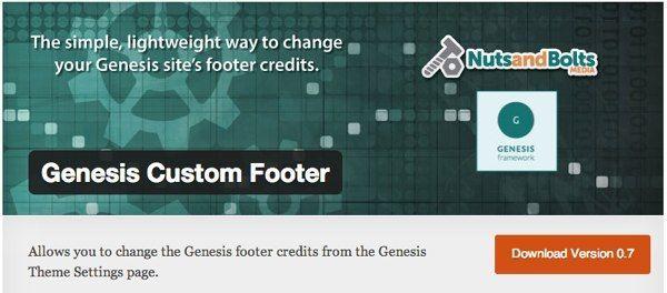 Genesis Custom Footer