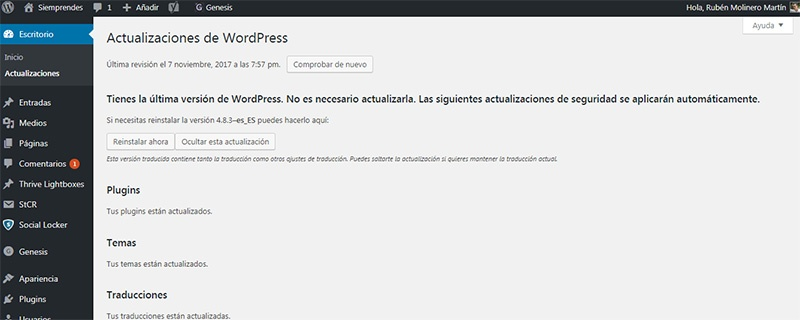 Panel de Actualizaciones de WordPress