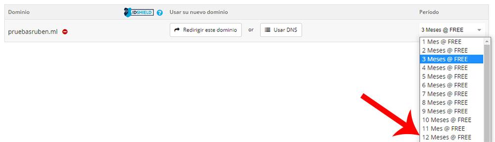 Selección dominio 12 meses gratis